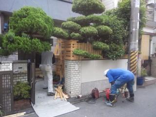 プチ解体 植木 庭石 大阪府松原市